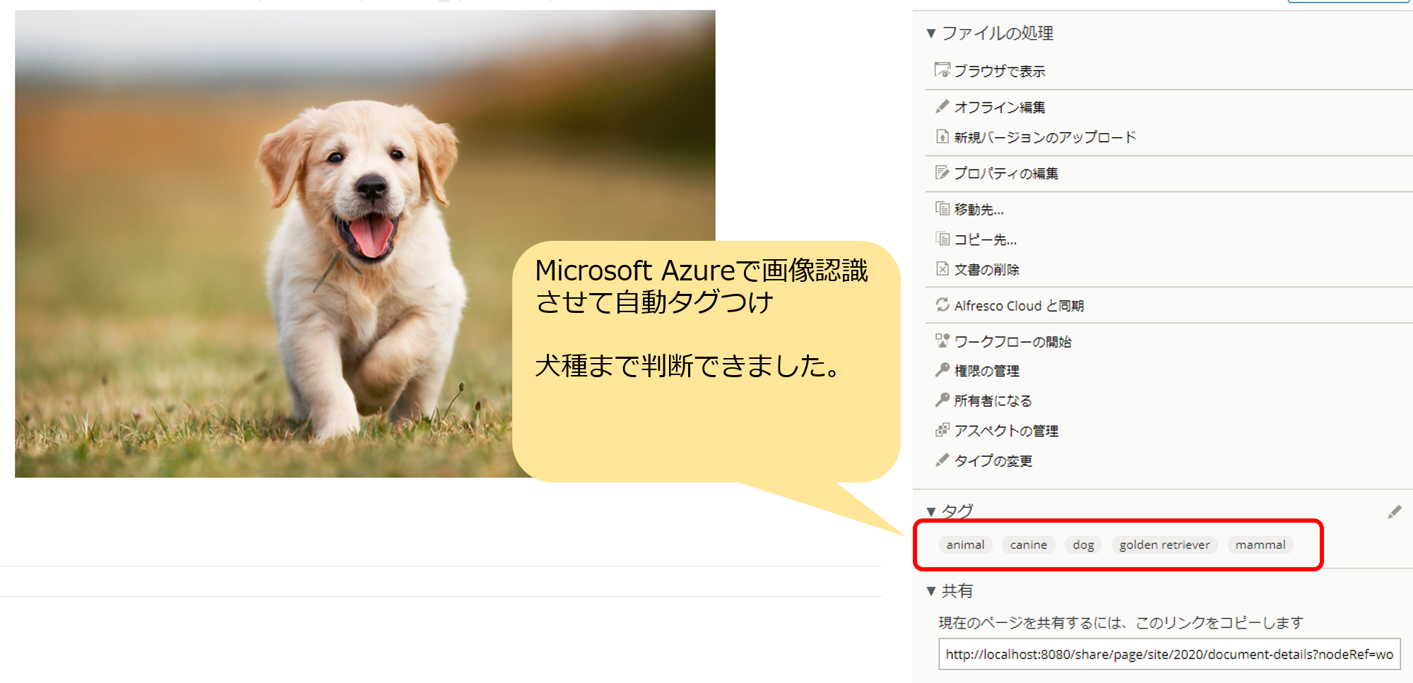 Microsoft Azureで画像認識させて自動タグ付け